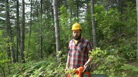 Eine Kettensägenarbeitskraft läuft das Holz durch stock footage