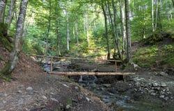 Eine kleine Holzbrücke über einem Strom unter Dickichten zwischen den Hügeln der Karpatenberge Stockfotografie