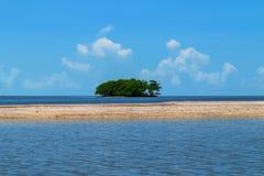 Eine kleine Insel im Golf von Mexiko, in Florida Lizenzfreie Stockfotos