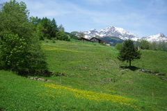 Eine Kleinstadt in der Schweiz Stockfoto