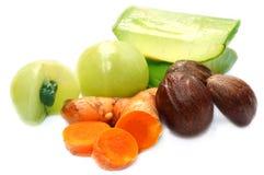Eine Kombination von ayurvedic Früchten Lizenzfreies Stockfoto