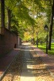 Eine Kopfsteinstraße unter einer Überdachung von Bäumen mit einem Ziegelsteinbürgersteig lizenzfreie stockfotografie