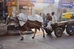 Eine Kuh, die einen Lastwagen auf den Straßen von Delhi, Indien zieht lizenzfreie stockfotos