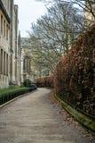 Eine kurvenreiche Straße in einem Universitätsgelände stockfotos