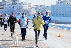 Eine lächelnde laufende Frau mit einem Hund auf einer Leine führte durch eine Gruppe städtische Läufer Lizenzfreies Stockbild