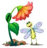 Eine lächelnde Libelle unter der riesigen Blume Stockbilder