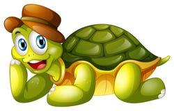 Eine lächelnde Schildkröte, die sich hinlegt Stockfotos