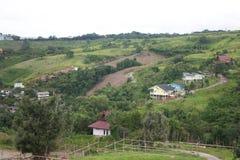 Eine ländliche Landschaft von grünen Bauernhoffeldern und von Landabhängen lizenzfreies stockbild