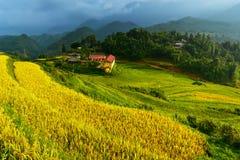 Eine ländliche Schule im Tal, MU-cang Chai, Vietnam und grünes Reisfeld Stockfotos