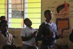Eine ländliche Schule im Vorort von Arusha, afrikanische Studenten in den Chemieunterrichten lizenzfreie stockbilder