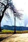 Eine Lampe im Park eines nebeligen Morgens des Herbstes Lizenzfreie Stockfotos