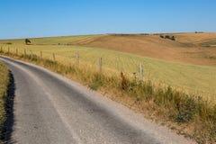 Eine Land-Straße in Sussex Stockbilder