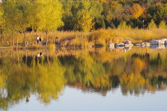 Eine Landschaft des Herbstes Stockbild