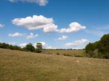 Eine Landschaft schoss Außenseite an einem klaren sonnigen Tag mit Schafen auf Stockfoto