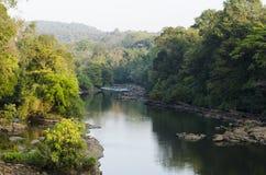 Eine Landschaft schoss von einem Fluss, der durch einen Wald überschreitet stockfotografie