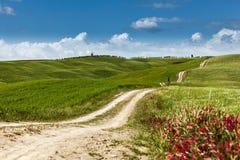 Eine Landstraße auf Rollenhügel in einer ländlichen Landschaft, Toskana Lizenzfreie Stockfotografie