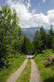 Eine Landstraße in den Schweizer Alpen Stockfotografie