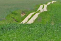 Eine Landstraße durch Ackerland Sandy-Hügel auf dem Weg Stockfotos