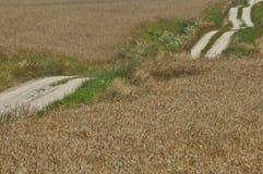 Eine Landstraße durch Ackerland Sandy-Hügel auf dem Weg Ein sonniger Tag einer durchschnittlichen Zone von Russland Lizenzfreie Stockbilder