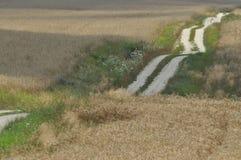 Eine Landstraße durch Ackerland Sandy-Hügel auf dem Weg Land Lizenzfreies Stockfoto