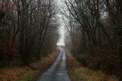 Eine Landstraße durch einen Wald in der französischen Landschaft Lizenzfreie Stockfotos