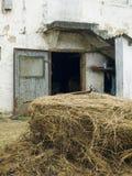Eine landwirtschaftliche Bauernhausszene Lizenzfreies Stockbild