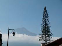 Eine Laterne mit Vulkan und araukaria Lizenzfreie Stockbilder
