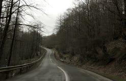 Eine leere Straße Lizenzfreie Stockfotografie