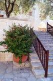 Eine Leiter und ein Blumentopf Plan des Plans Italienischer Patio Stockbild