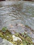 Eine Liebe und ein Fluss lizenzfreie stockbilder