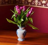 Eine lila Tulpenknospe Macrophoto Lizenzfreie Stockfotos