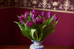 Eine lila Tulpenknospe Makro Lila Tulpen Knospe, Blumenblätter, Blumenstrauß Lizenzfreie Stockfotografie