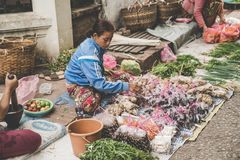 Eine lokale laotianische Bergvolk-Frau verkauft Gemüse am täglichen Morgenmarkt in Luang Prabang, Laos auf dem am 13. November 20 Stockfotos