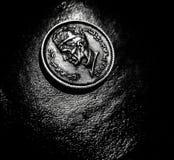 Eine Münze Lizenzfreies Stockfoto