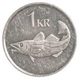 Eine Münze der isländischen Krona Lizenzfreie Stockfotos