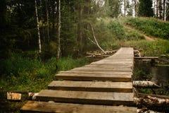 Eine malerische Holzbrücke von Planken mit und von Birkenstangen Nebelhafter Wald stockbild