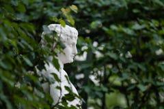 Eine Marmorbüste herein unter den Blättern stockfotografie