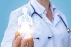 Eine medizinische Arbeitskraft zeigt die inneren Organe Stockfotos
