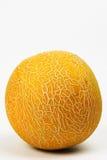 Eine Melone Lizenzfreie Stockfotos