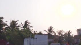 Eine Menge von den Krähen, die auf Haus fliegen, übersteigen stock footage