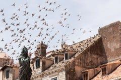 Eine Menge von den Tauben, die in den hellblauen Himmel über den Dächern der alten mittelalterlichen Stadt fliegen Im Vordergrund lizenzfreie stockfotos