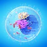 Eine menschliche Zelle vektor abbildung