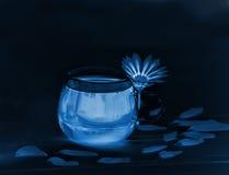 Eine minimalistic künstlerische Ansicht einer Schale mit einem Getränk und einer Blume Stockfotos