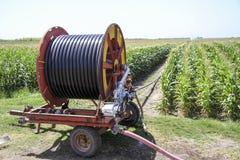 Eine Mittelgelenksprinkleranlage, die ein Kornfeld im F.E. wässert Stockfotos