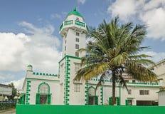 Eine Moschee und eine Palme auf der Straße Stockbild
