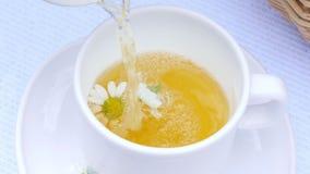 Eine Nahaufnahme, eine weiße Schale, dort sind Kamillenblumen in ihr Die Schale wird mit kochendem Wasser, Kamillentee gefüllt stock video