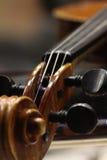 Eine Nahaufnahme eines Cello pegbox Lizenzfreies Stockfoto