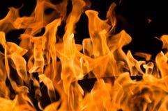 Eine Nahaufnahme von intensiven Flammen in einem Feuer stockfoto
