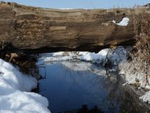 Eine natürliche Brücke durch einen eisfreien Frühling mit schneebedeckten Ufern Stockbild