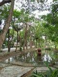 eine Natur in Asien Stockbild